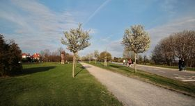 El parque Ladronka, foto: VitVit, Wikimedia Commons, CC BY-SA 4.0