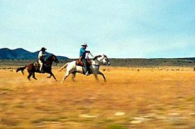 'Requiem for Billy The Kid'