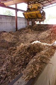 Die Biomasse (Foto: ČTK)