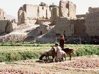 The Afghan province of Logar, photo: Luke Powell, www.un.org.pk