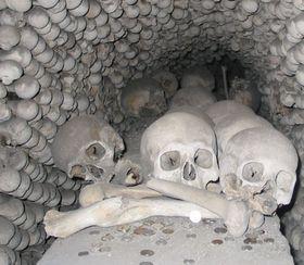 El laberinto subterráneo de Brno encierra más de 50 mil huesos y cráneos