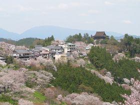 Berge und Wälder in Japan (Foto: Tawashi2006, Wikimedia CC BY-SA 3.0)