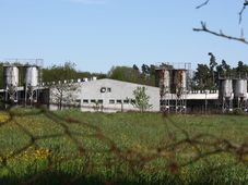 Lety pig farm, photo: archive of Radio Prague