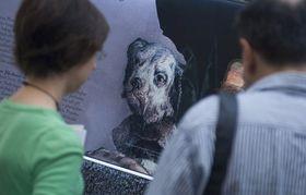 'Aquí están los perros de Dios', foto: ČTK