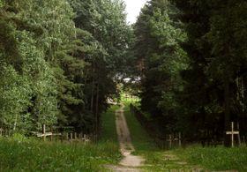 Курапаты, Фото: Андрей Кузнечук, CC BY-SA 3.0 Открытый источник