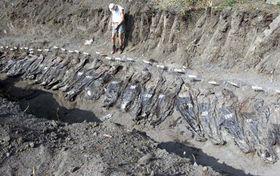Durante la guerra étnica en los Balcanes, en la década de los noventa, miles de personas fueron enterradas en fosas comunes