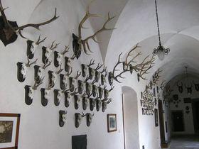 Brandýs nad Labem chateau, photo: Dominik Jůn