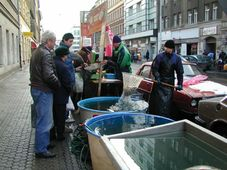 Photo: Archives de Radio Prague