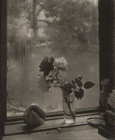 'Last Rose' (1956), © Estate of Josef Sudek, photo: archive of National Gallery of Canada