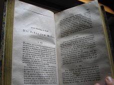 Dried book, photo: Pavla Horakova