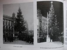 Vánoční strom na náměstí Svobody v Brně, reprofoto z knihy Rudolf Těsnohlídek a Vánoční strom republiky, vydané Moravským zemským muzeem v Brně