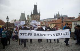 В Праге прошла демонстрация против действий социальной службы Barnevernet (Фото: ЧТК)