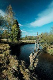 Šumava, photo: www.czechtourism.com