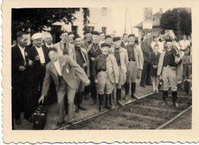 Сокол, фото: Archiv Barbory Němcové