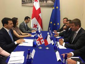 Глава МИД Чехии Томаш Петршичек и председатель парламента Грузии Арчил Талаквадзе, Фото: Архив MZV / Twitter