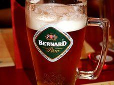 Пиво «Бернард», Фото: открытый источник