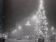 L'Arbre de la République à Brno en 1938, photo: repro 'Rudolf Těsnohlídek a vánoční strom republiky' / Moravské zemské muzeum, Brno