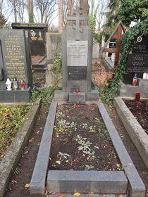 могила Василия Немировича-Данченко, Фото: Екатерина Сташевская