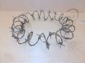 Ожерелье из колючей проволоки, автор: Дита Бухтова, фото: Маркета Кахликова