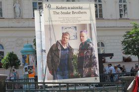 «Кобры и ужи» (Фото: Кристина Макова, Чешское радио - Радио Прага)