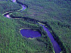 Место катастрофы (Фото: www.tunguska.ru)