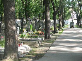 Friedhof Olšanské hřbitovy (Foto: Kristýna Maková, Archiv des Tschechischen Rundfunks - Radio Prag)