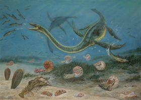 Плезиозавр. Автор рисунка:  Петр Модлитба