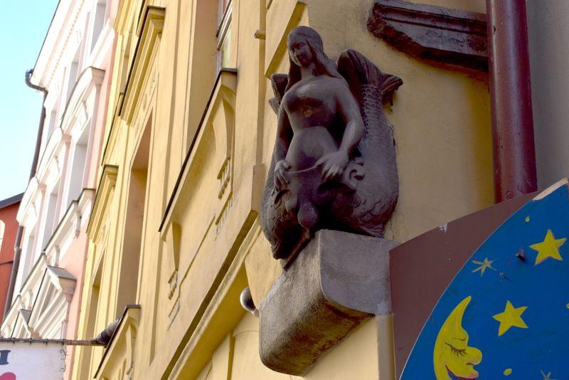 Фото: Екатерина Сташевская
