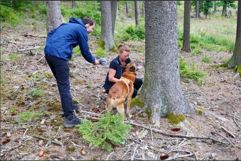 Аннетте Иохансон и собака Хиро, фото: Роман Модлингер, Twitter
