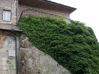 Castillo de Houska, foto: Jana Huzilová
