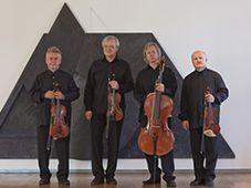 The Stamitz string quartet, photo: Official website of Stamitz quartet