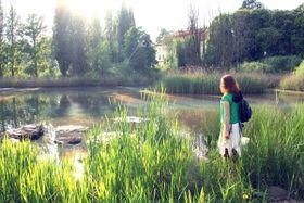 Водно-болотные угодья в Яблонне-в-Подйештеди, Фото: официальный сайт лагеря «Шмель»