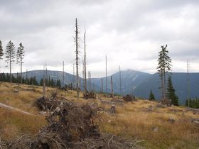 Hnědý vrch, photo: Honza Groh (Jagro), CC BY-SA 3.0 Unported