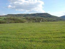 Montes de Doupov