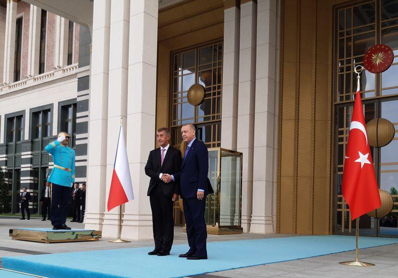 Andrej Babiš und Recep Tayyip Erdoğan (Foto: ČTK / Marek Opatrný)