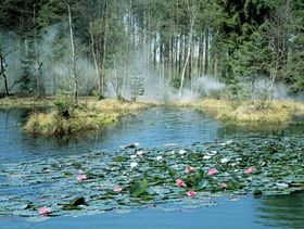 Озерцо Русалки