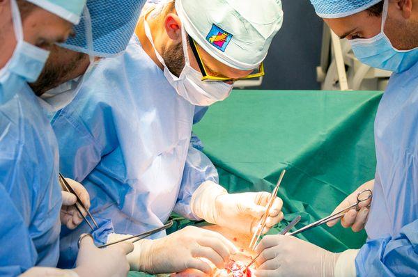 Фото: Archiv Letní školy experimentální chirurgie