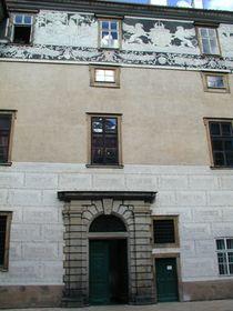 El palacio de Brandýs