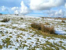 Tauwetter - obleva (Foto: Mary und Angus Hogg, Wikimedia Commons, CC BY-SA 2.0)