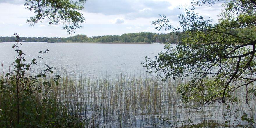 Mácha-See (Foto: Katarína Brezovská)
