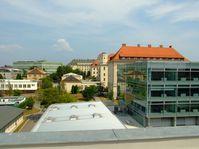 Университет им. Менделя в Брно, фото: Kirk, Wikimedia Commons, CC BY-SA 3.0