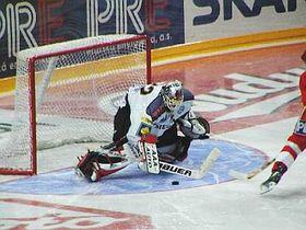 Petr Briza, photo: www.hcsparta.cz