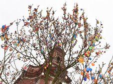 Дерево в г. Границе, украшенное пасхальными яйцами, Фото: ЧТК