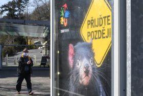 Pražská zoo je momentálně uzavřena, foto: ČTK / Michal Kamaryt