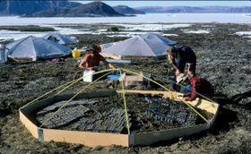 Arctic science, photo: archive of Josef Svoboda