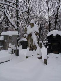 Olšany Cemetery, photo: Pavla Horáková