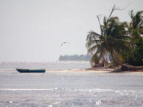Karibik, foto: Šarūnas Burdulis, CC BY-SA 2.0