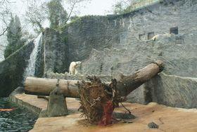 El pabellón de los osos polares, foto: Хомелка, CC BY-SA 3.0 Unported