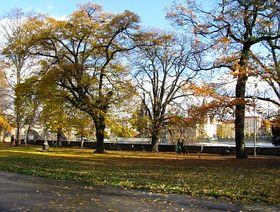 Kampa park, photo: Barbora Němcová