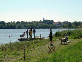 Vavřinecký rybník na Kutnohorsku, foto: palickap, CC BY 3.0